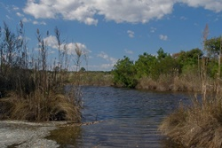 nature preserve near williamsburg petfriendly